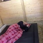 TDJ HIT Softbed, TDJhors, hesteseng, hesten må sove på gulvet