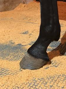 Hestehov på TDJ Isohorsmat der isolerer bunden af hesteboksen