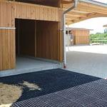 TDJhors - etablering af TDJ Hit Armering foran læskur, ridebane, hestebund, undgå mudder på fold,