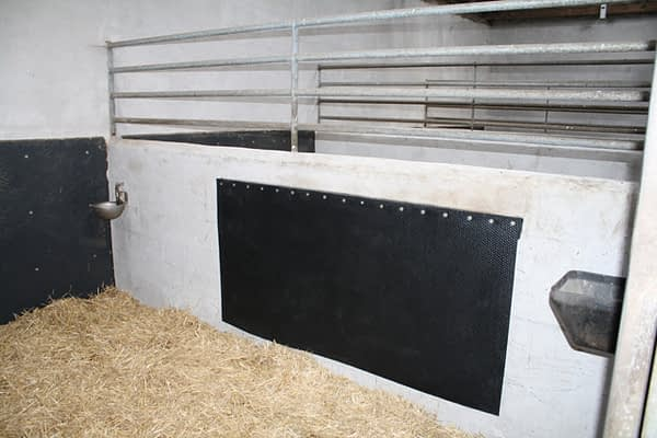TDJ Sparkegummi, spark på boksvæg, hestespark, undgå spark i hesteboks,